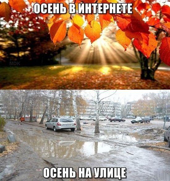 Прикольные картинки про осень с надписями 08
