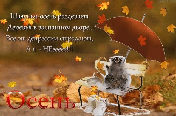Прикольные картинки про осень с надписями 11