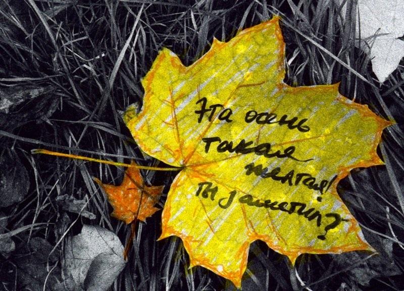 Прикольные картинки про осень с надписями 20
