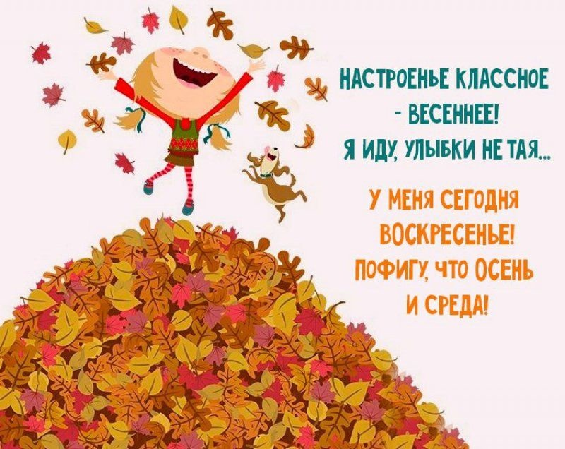 Прикольные картинки про осень с надписями 24