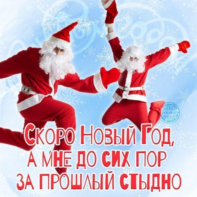 Прикольные открытки про новый год с надписями 19