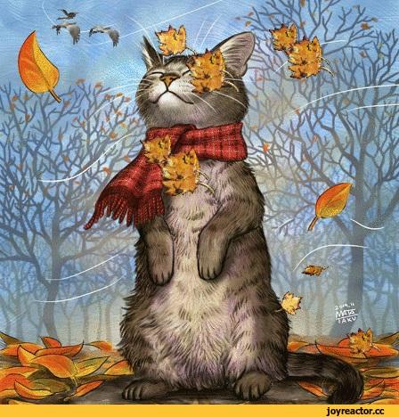 Смешные и интересные картинки про осень 05