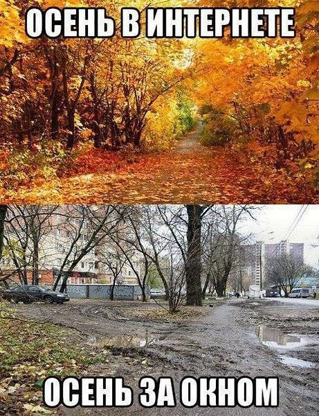 Смешные и интересные картинки про осень 08