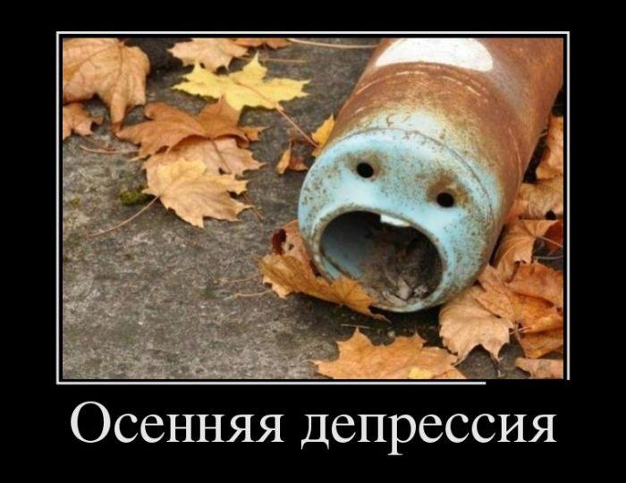 Смешные и интересные картинки про осень 11