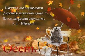Смешные и интересные картинки про осень 24