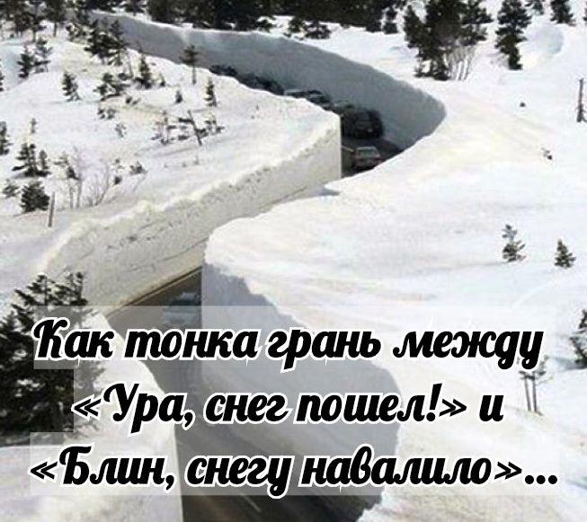 Смешные картинки приколы про первый снег 13