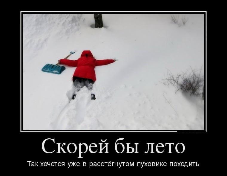 Смешные картинки приколы про первый снег 18