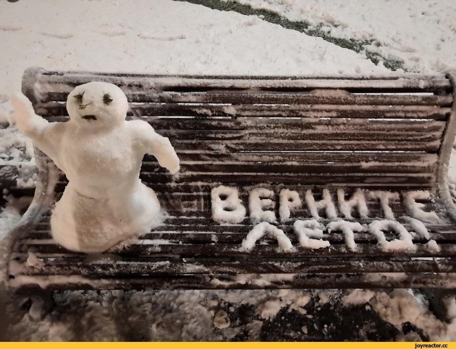 Смешные картинки приколы про первый снег 25