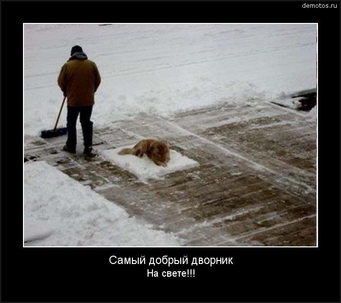 Смешные картинки с первым снегом 10
