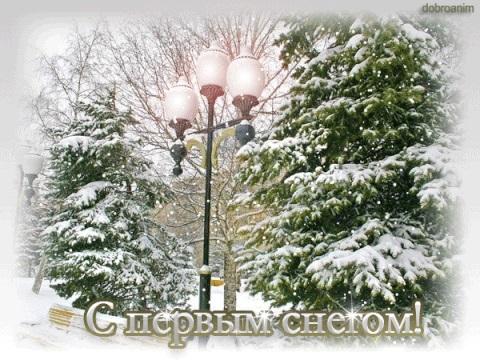 Смешные картинки с первым снегом 17