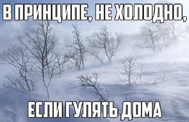 Смешные картинки с первым снегом 20