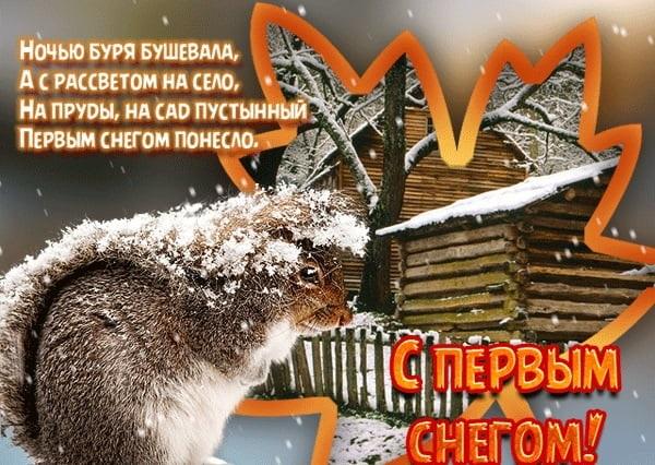 Смешные картинки с первым снегом 23