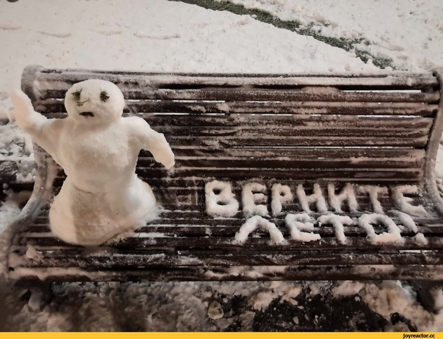 Смешные картинки с первым снегом 26
