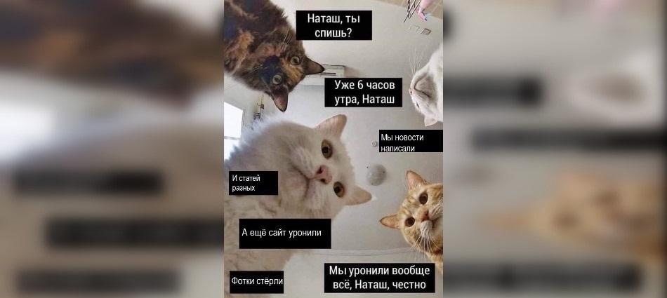 Смешные мемы про день рождения в новый год 19