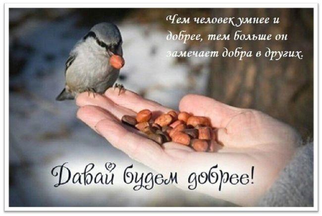 Всемирный день доброты 09