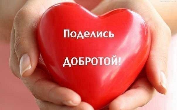 Всемирный день доброты 18