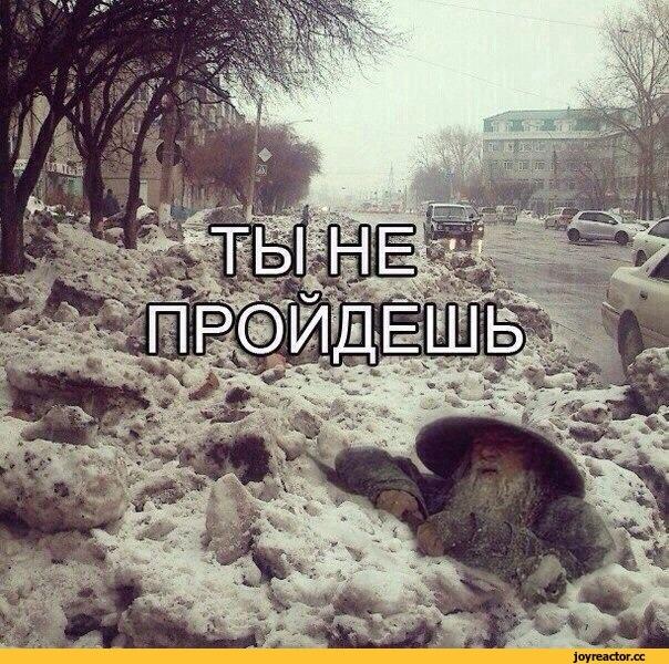 Смешные картинки скоро зима лучшие 04