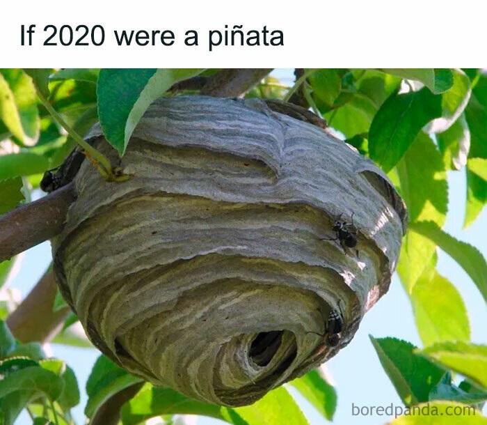Мемы про уходящий 2020 год 02