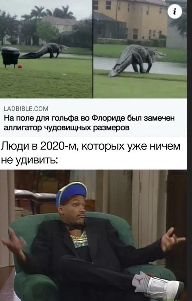 Мемы про уходящий 2020 год 24
