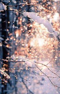 Зима и февраль лучшие обои на телефон   подборка (1)