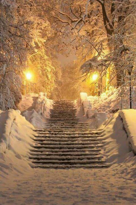 Зима и февраль лучшие обои на телефон   подборка (11)