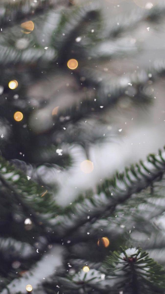 Зима и февраль лучшие обои на телефон   подборка (14)