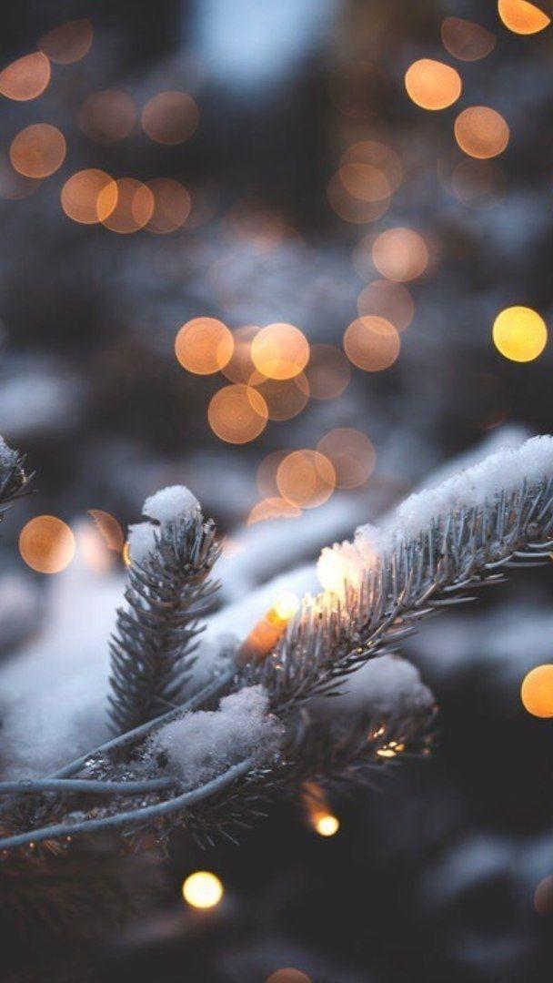 Зима и февраль лучшие обои на телефон   подборка (15)