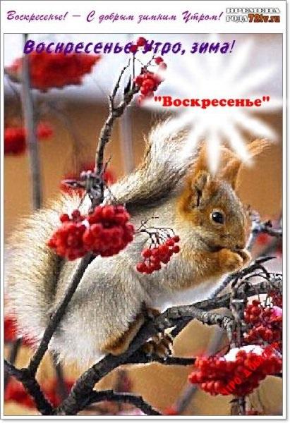 Картинки с добрым зимним утром воскресенья 10