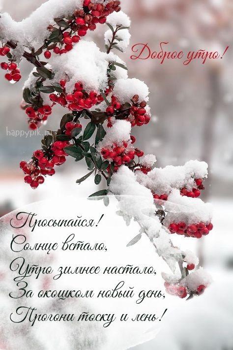 Красивые с добрым утром, зимние интересные картинки 02