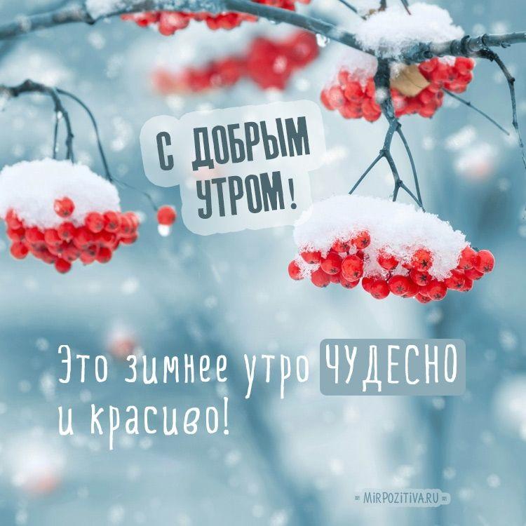 Красивые с добрым утром, зимние интересные картинки 04