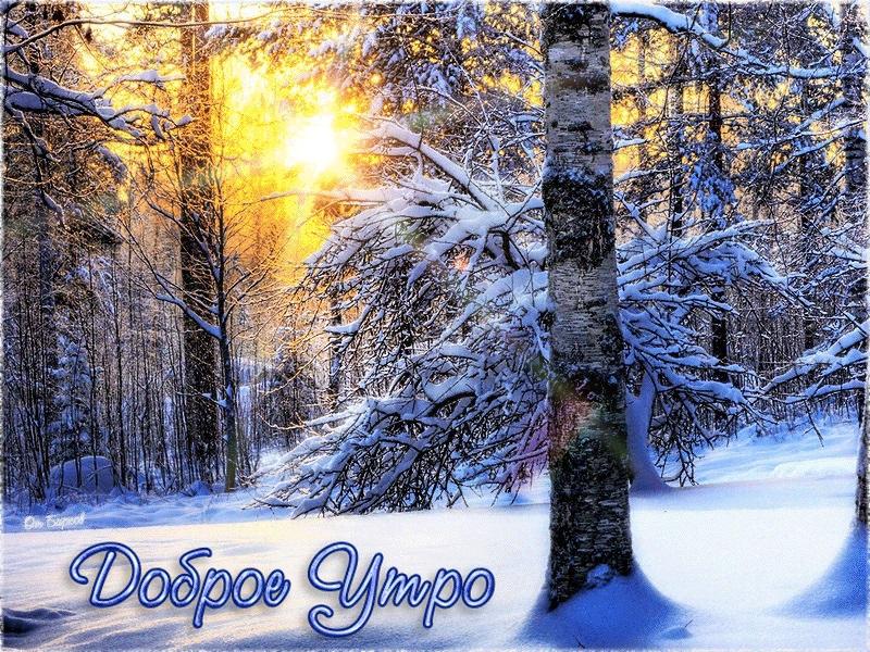 Красивые с добрым утром, зимние интересные картинки 06