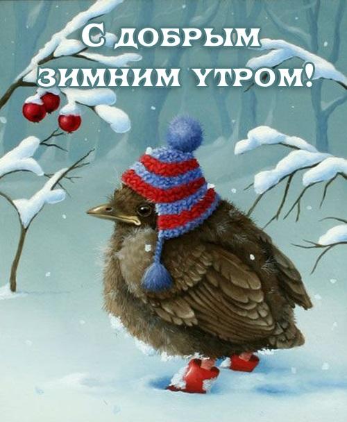 Красивые с добрым утром, зимние интересные картинки 10