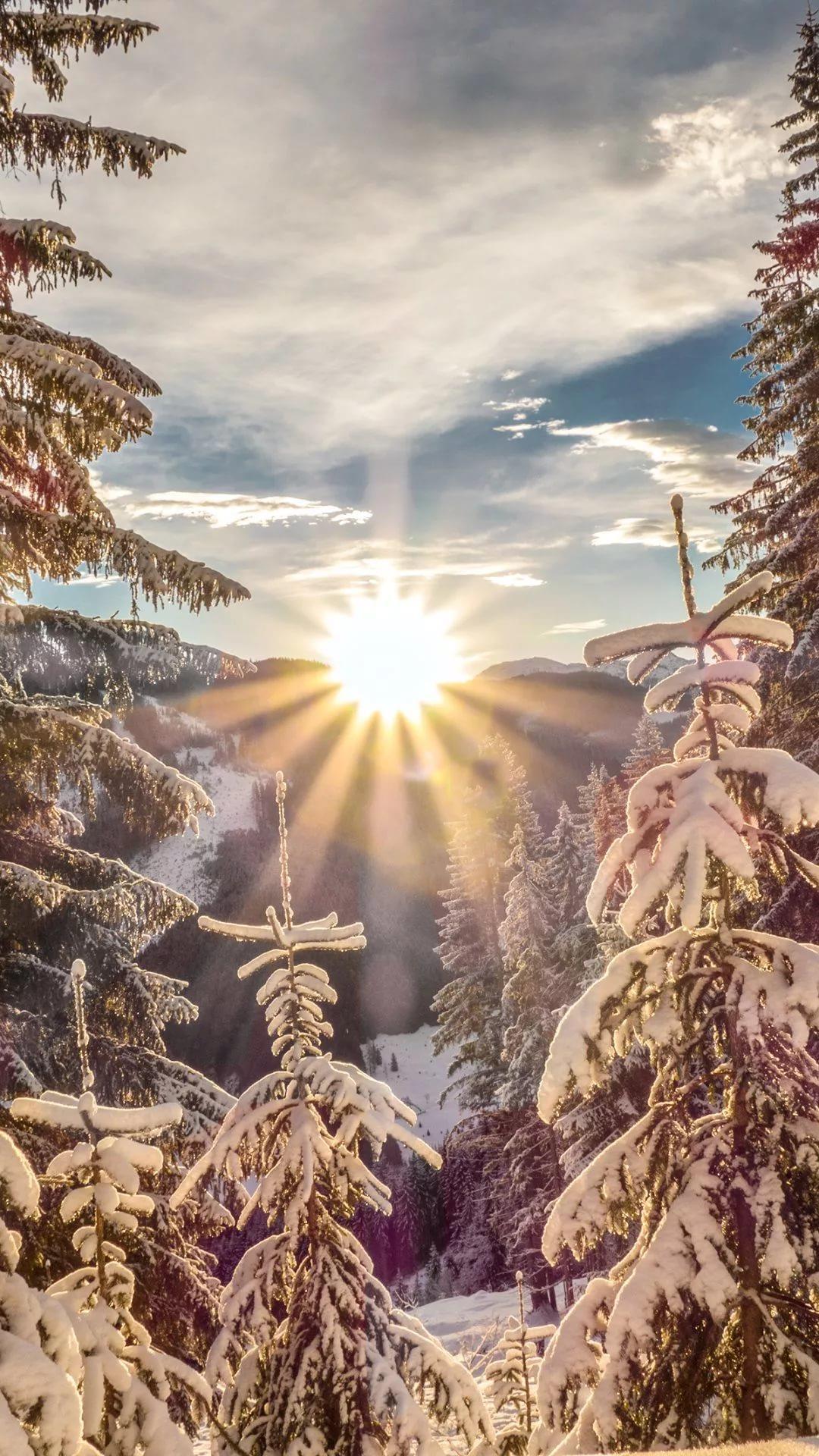 Вертикальные обои на айфон красивые зимние 1