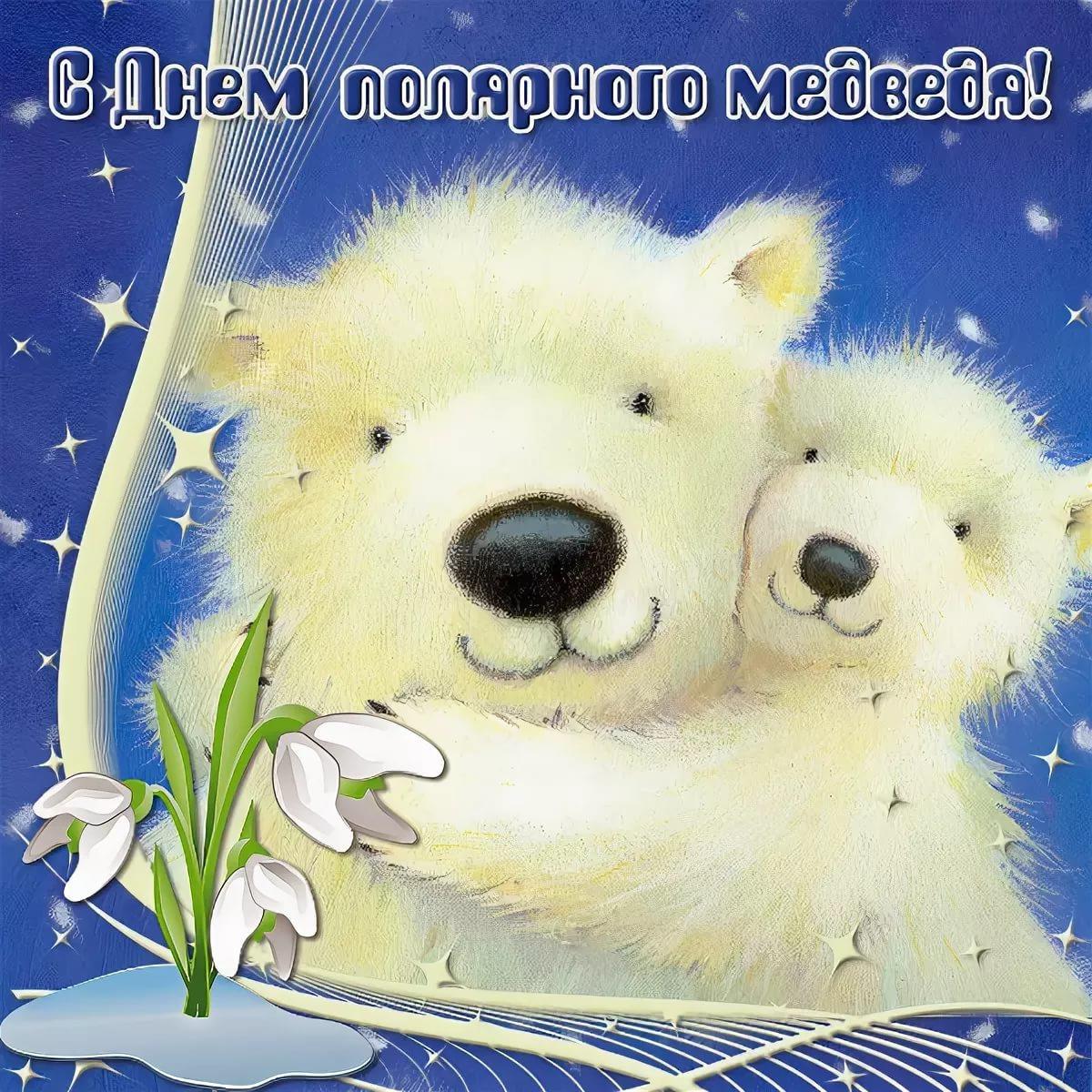 День белого медведя, красивые картинки поздравления 9
