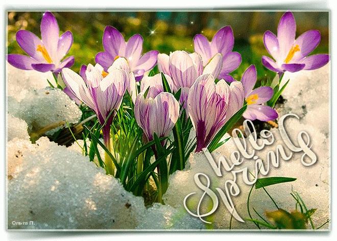 Красивые открытки Здравствуй Весна   подборка (1)