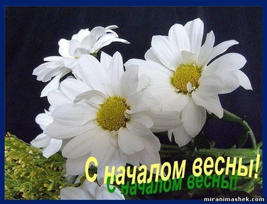 Красивые открытки Здравствуй Весна   подборка (13)