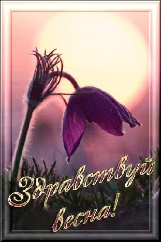 Красивые открытки Здравствуй Весна   подборка (15)