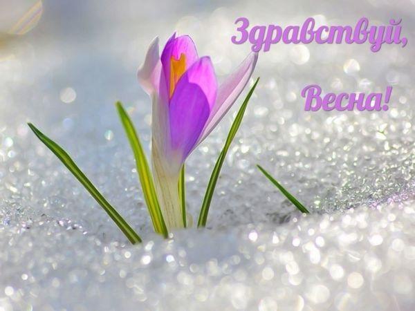 Красивые открытки Здравствуй Весна   подборка (16)