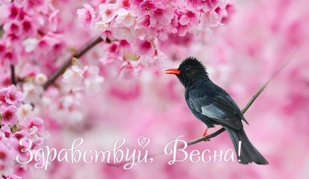 Красивые открытки Здравствуй Весна   подборка (17)