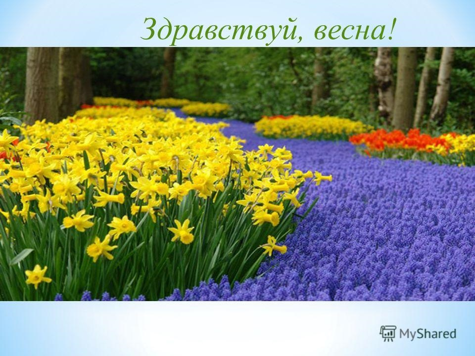 Красивые открытки Здравствуй Весна   подборка (19)