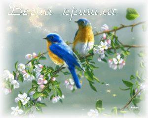 Красивые открытки Здравствуй Весна   подборка (6)