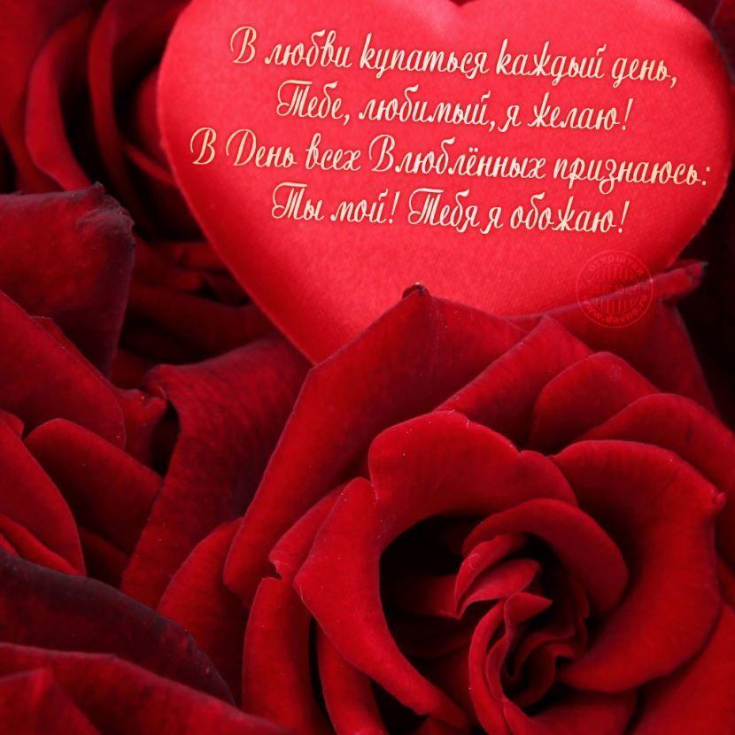 Красивые открытки на 14 февраля для девушки, поздравления (2)