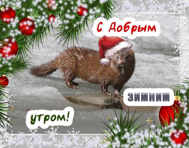 Красивые открытки с добрым зимним утром для мамы (2)