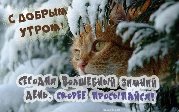 Красивые открытки с добрым зимним утром для мамы (8)