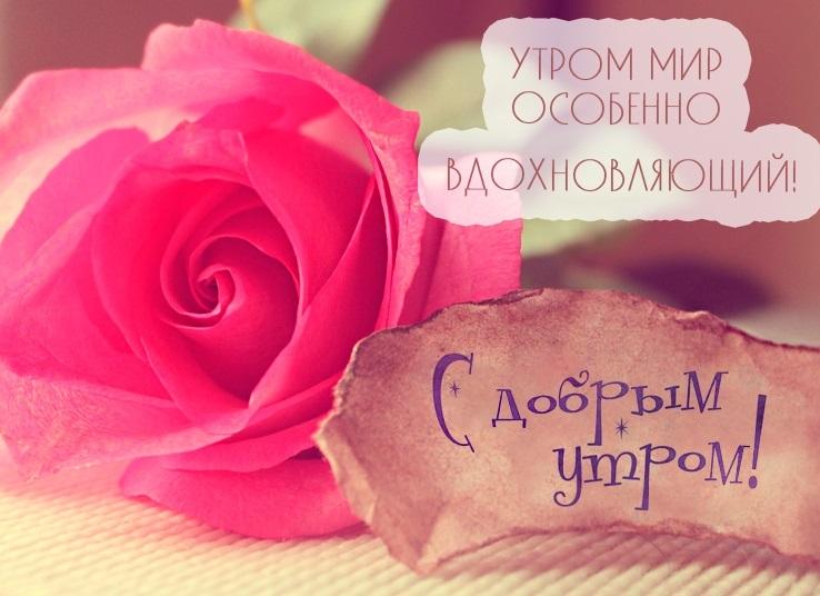 Милые пожелания доброго утра любимой девушке, своими словами (24 фото) 13