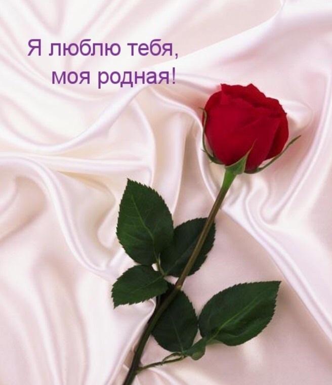 Нежные и красивые картинки я тебя люблю , девушке любимой (22 фото) 17