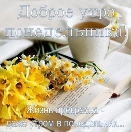 Светлое и доброе утро понедельника, красивые картинки (23 фото) 18