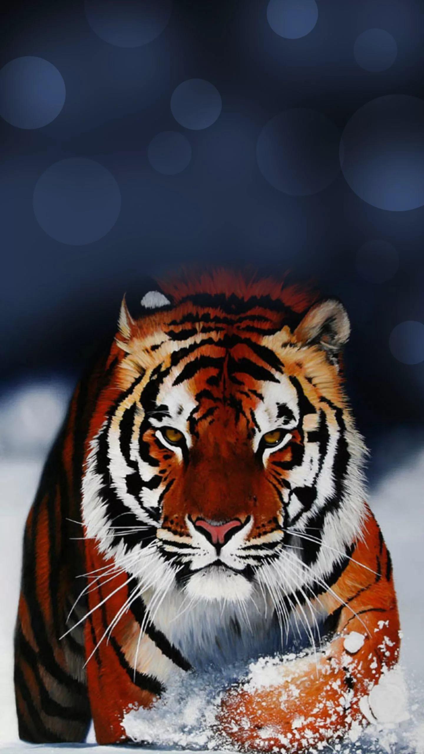 Картинки тигра на телефон скачать лучшие 2