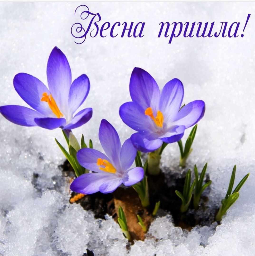 Весна пришла картинки 09