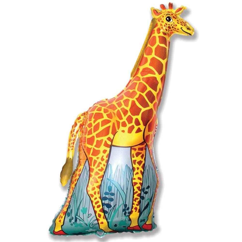 Жираф фото и картинки 15